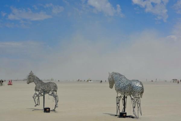 Burning Man, 2016